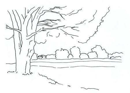 Трафарет: дерево на берегу озера