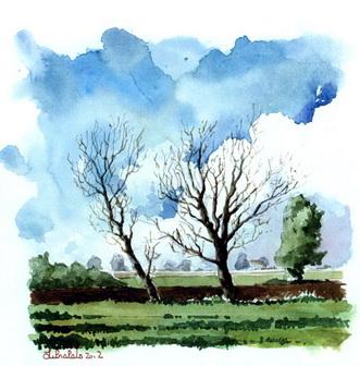 Этюд с двумя деревьями без листьев