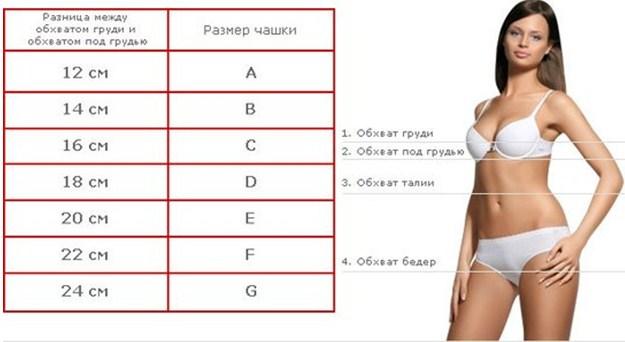 Буквенная таблица размеров бюстгальтера
